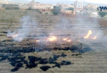 Photo of (انفراد) الحوثيون يحرقون مزارع الرئيس اليمني السابق تمهيداً لبيعها