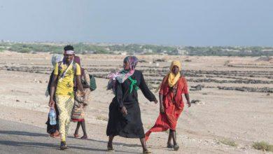 Photo of تقرير أممي يعلن وصول أكثر من 37 ألف مهاجر إلى اليمن خلال 2020
